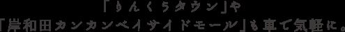 「りんくうタウン」や「岸和田カンカンベイサイドモール」も車で気軽に。
